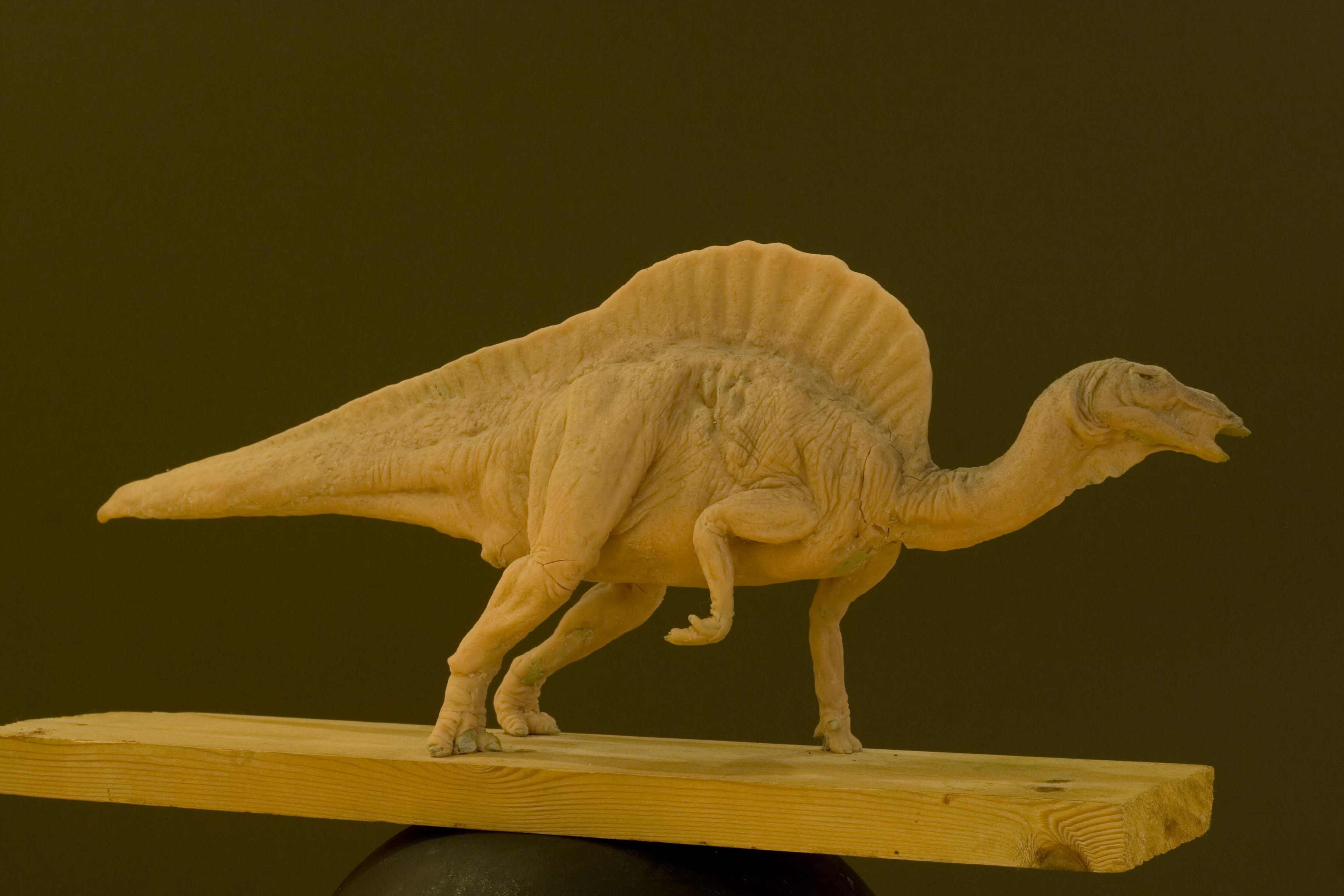 Ouranosaurus for Dorchester Dinosaur Mus