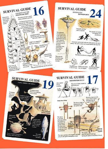 Survival 2 166.jpg