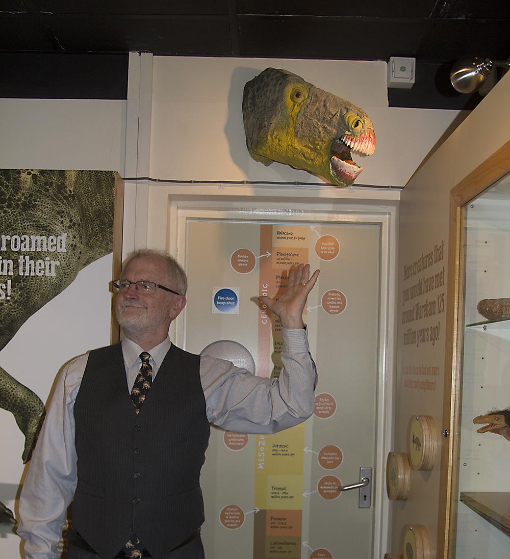 Iguanodon head, Wareham Town Museum