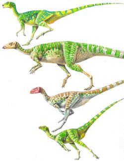 hypsilophodonts