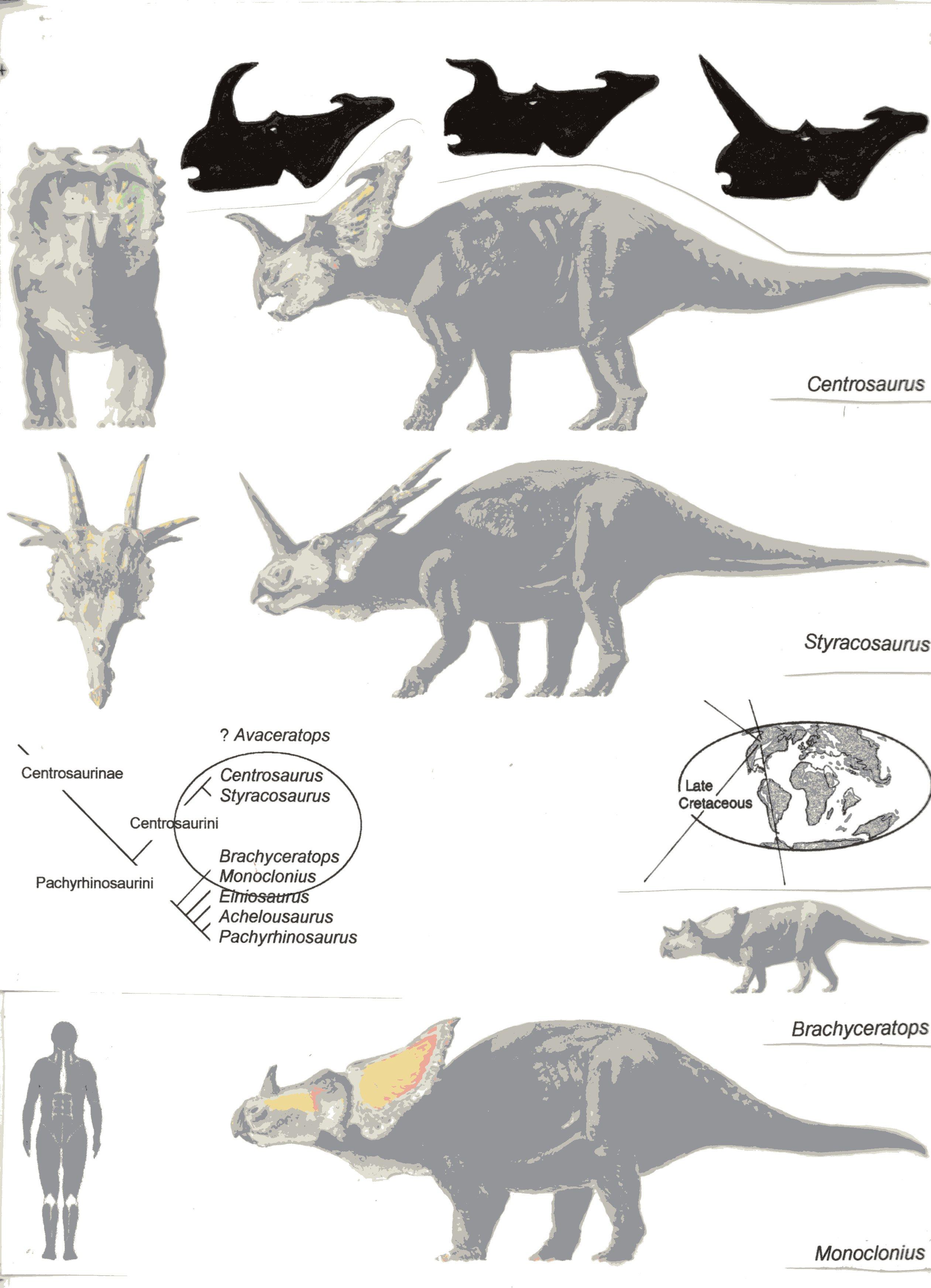 Ceratopsians 2143