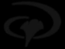 YWAM-Logo-800x600.png