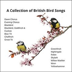 British Bird Songs.png