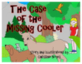 Missing Cooler Cover.jpg