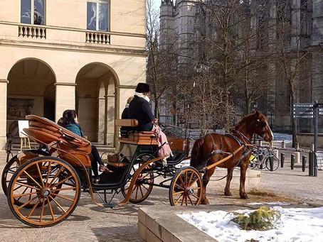 坐着马车,一起在奥尔良拥有一段浪漫之旅吧!BALADE ROMANTIQUE EN CALÈCHE AU CŒUR D'ORLÉANS