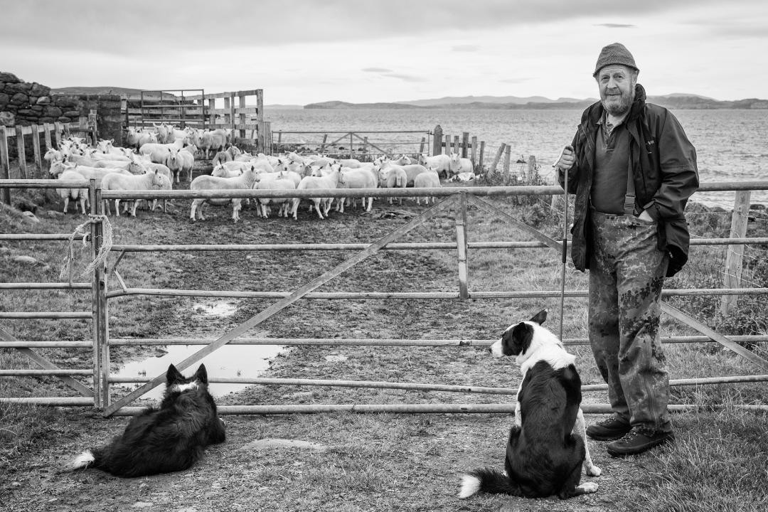Assynt Crofters by Ann Chown
