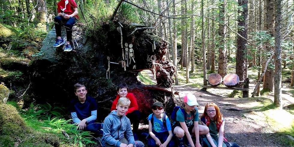 Woodland Adventure - Culag Woods, Lochinver
