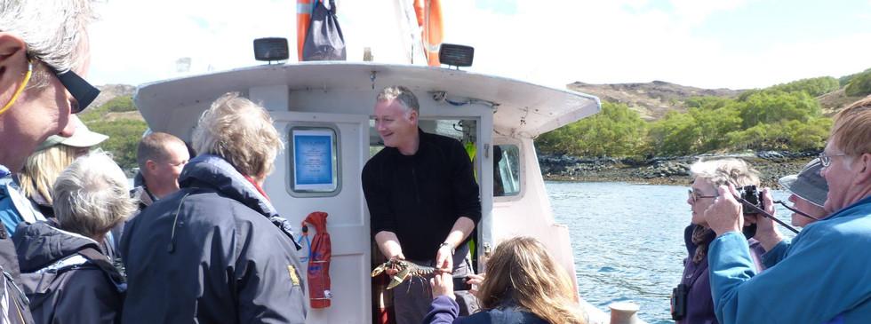 Kylesku Boat Trips
