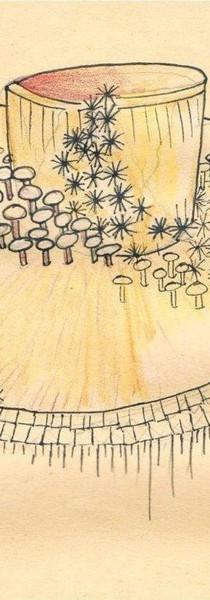 Concept Sketch, Tania Sanhueza