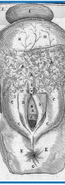 Casseri (1627)