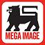 Logo mega image.png