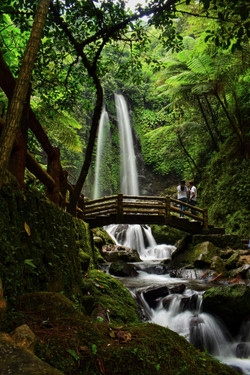 wooden-bridge-with-the-view-of-waterfall