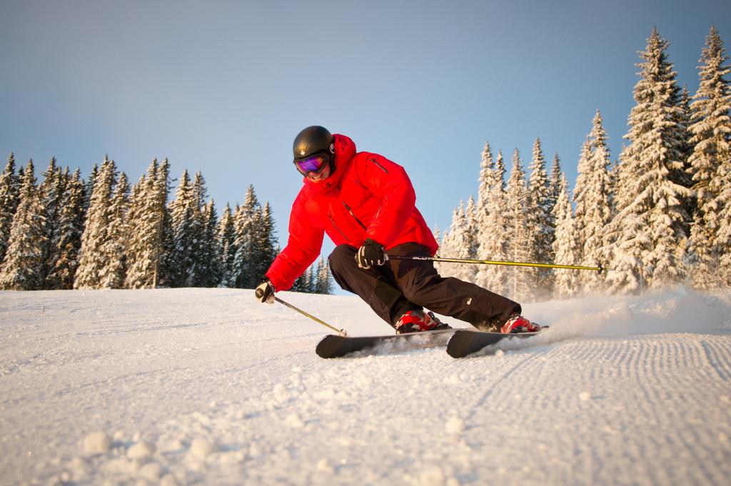 ski austria 1.jpg