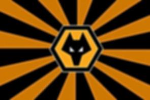 Wolverhampton Wanderers FC.jpg