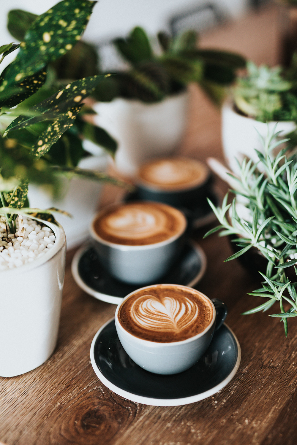 Coffee and plants on a table