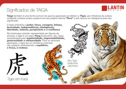 História Taiga 5