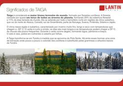 História Taiga 4
