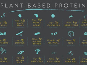 Debunking the Protein Myth