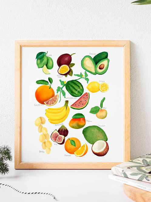 Fruit Glicee art print poster, botanical poster, rainforest fruit , Nature guide