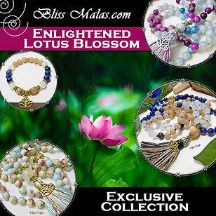 enlightened blossom collection.jpg