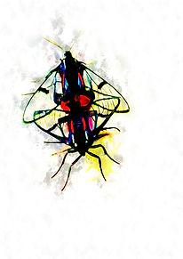 symmetrical-flagrant-cristiano-chaussard