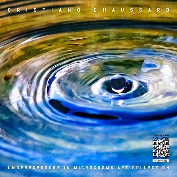 Capas-Chaussard-2.png
