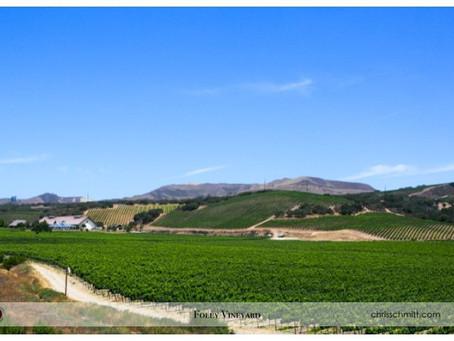 Foley Estates and Vineyard Wedding