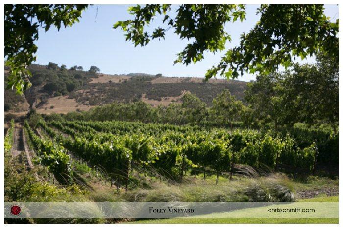 0025_Foley Winery Wedding