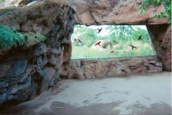 Zoo 20050005