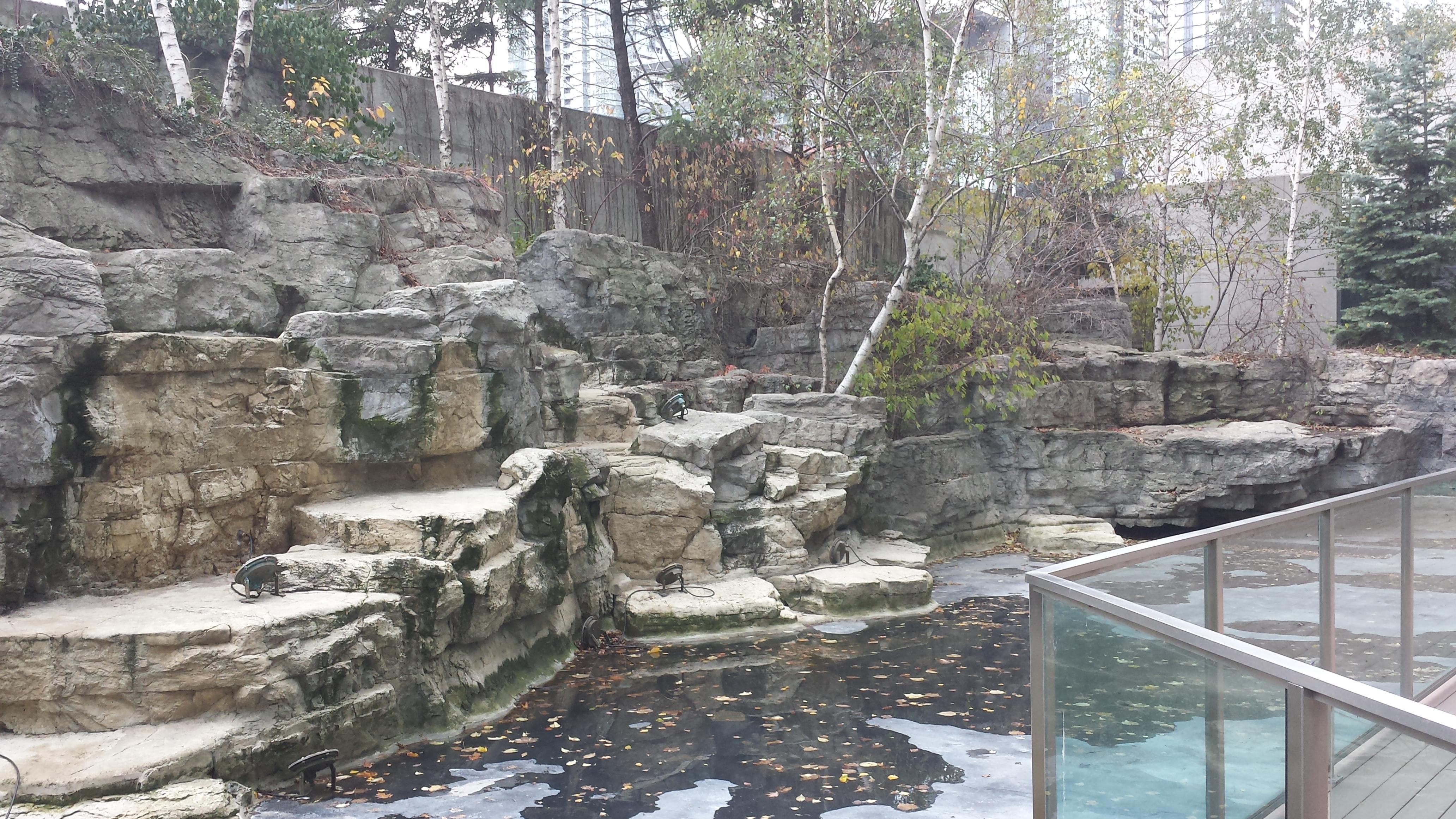 Toronto Condo Garden