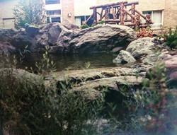Artificial Rock Pond