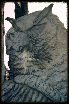 Custom Hand Carved owl statue