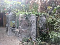 Turtle Habitat walls