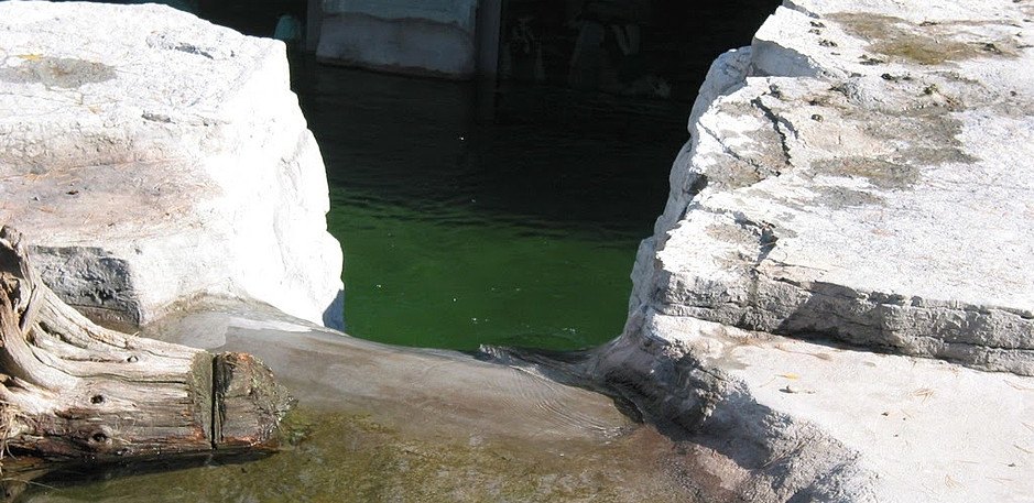 Top view of the waterslide