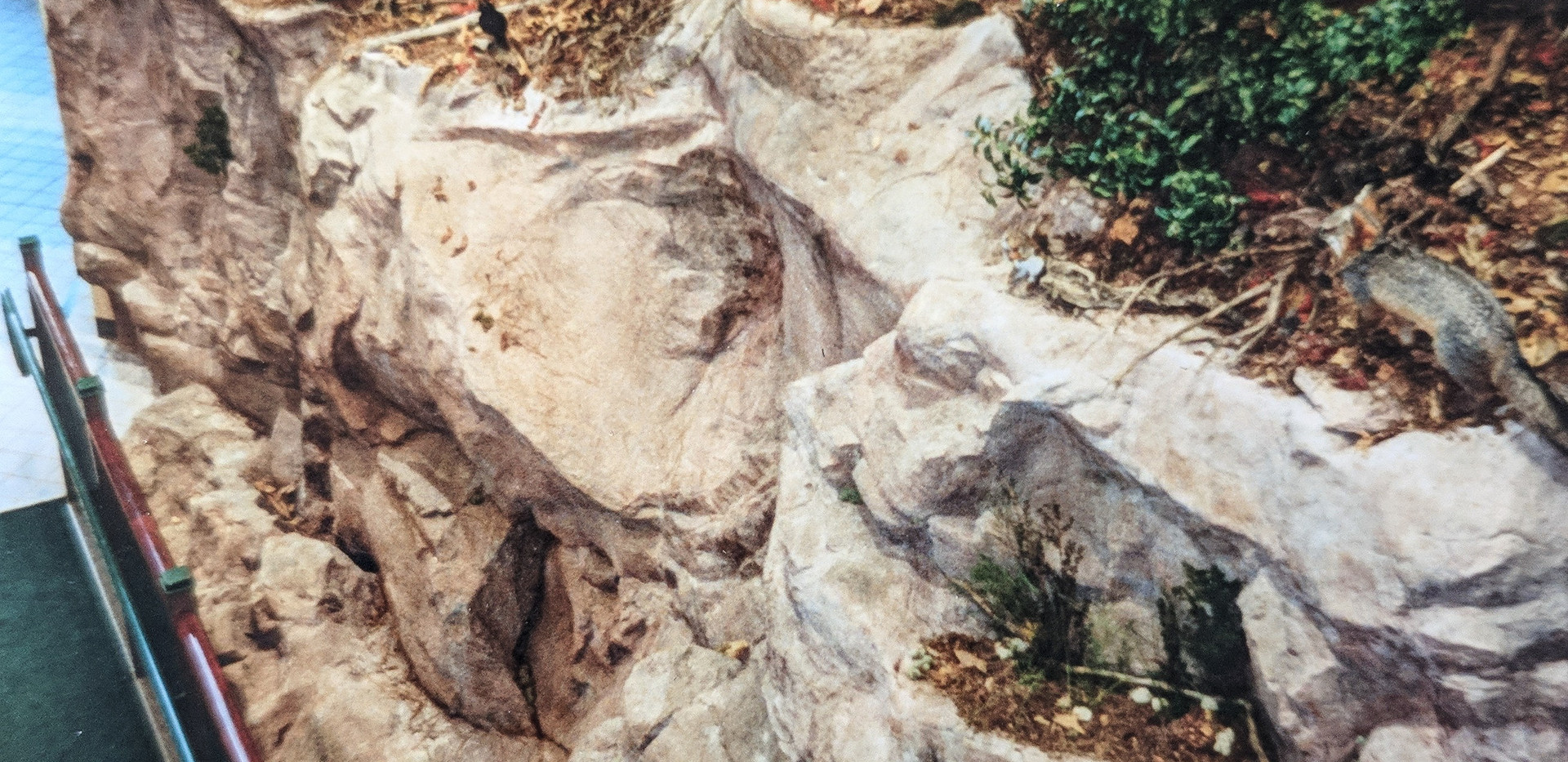 Close up of the artificial rock