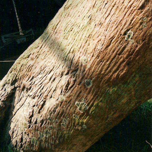 Close up artificial tree details