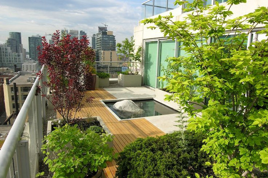 Rooftop Garden and Pond
