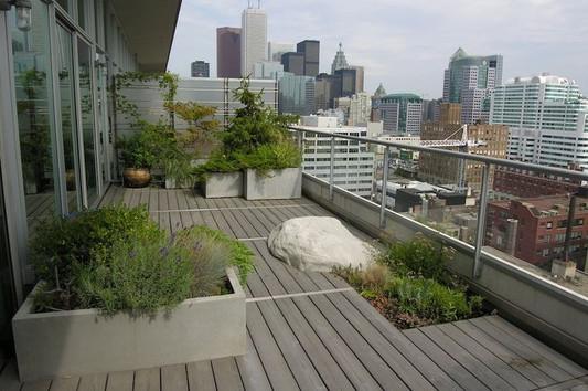 Rooftop Garden with artificial boulders