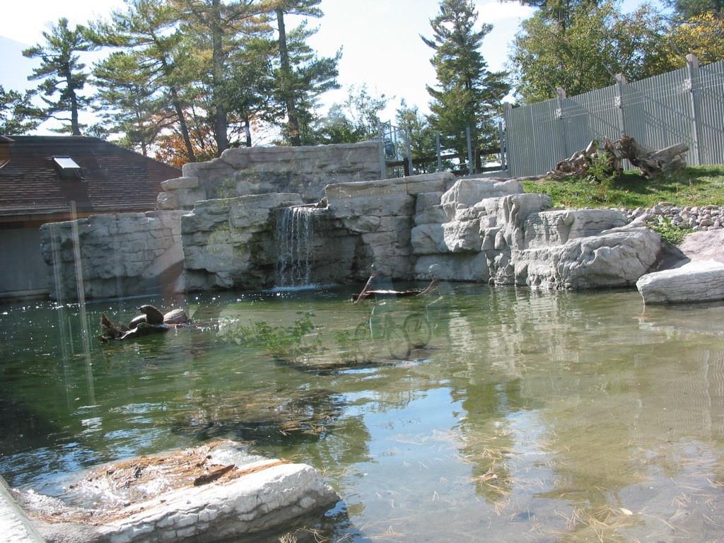 Riverview Zoo Otter Habitat
