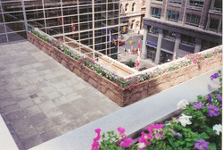 Rooftop Garden for the Office