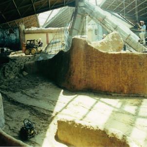 Construction Photo of the gorilla habitat