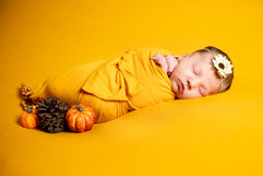 Lisa Cox Photography-Family-44.JPG