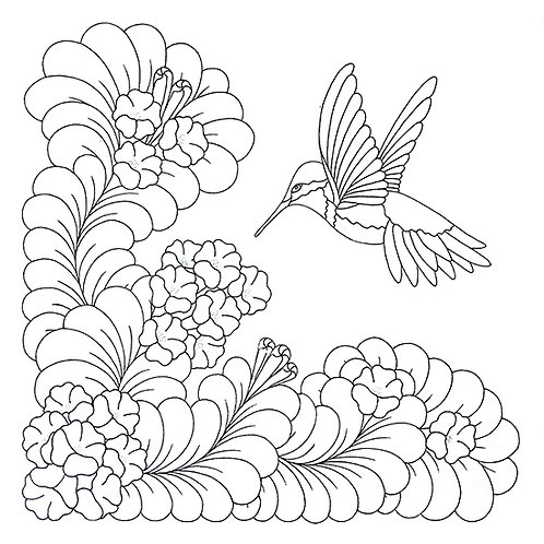 Hummingbird with Trumpet Vines