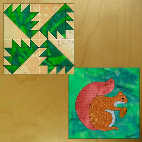 Forest Path and Pine Squirrel