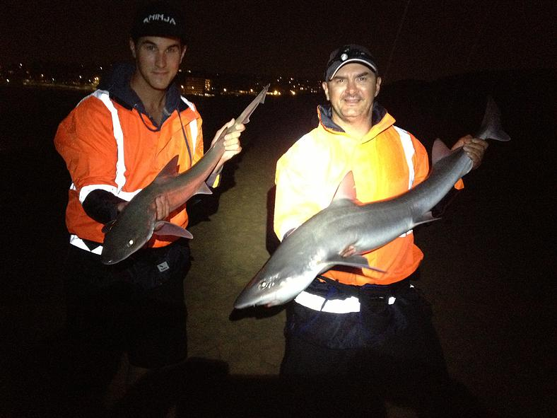 Tackle International David Cox And Sal Shark Hunters