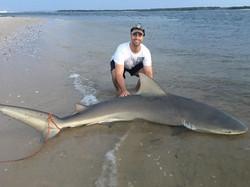 Adam Vee With A Bull Shark