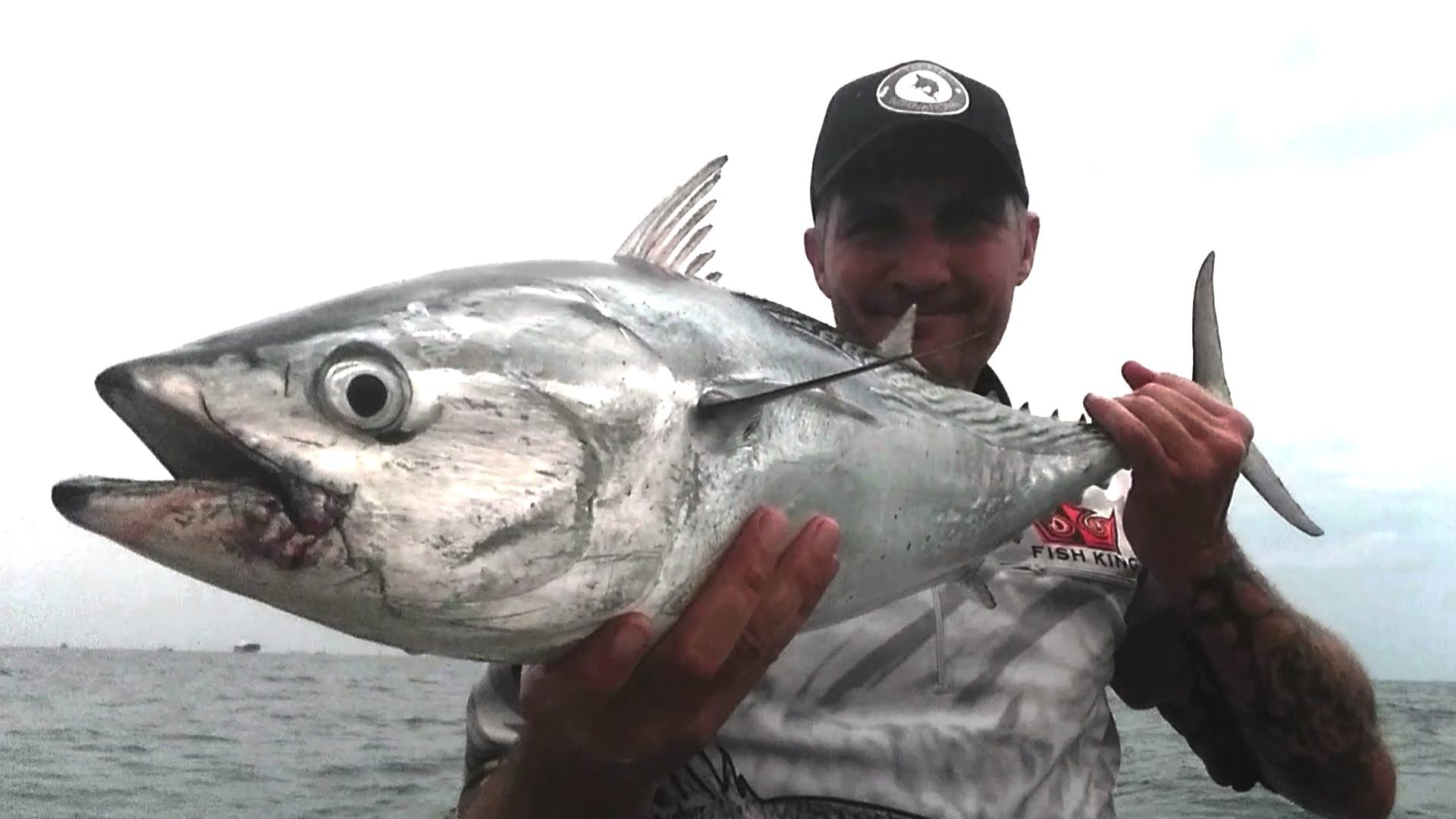 Tackle International Phil Gosden Mac Tuna