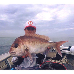 Tackle International Snapper Gianni