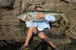 Tackle International Gibbo 20kg