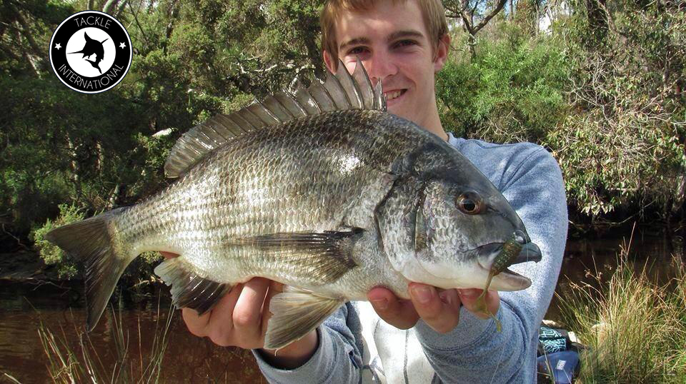 Tackle International cowan bream